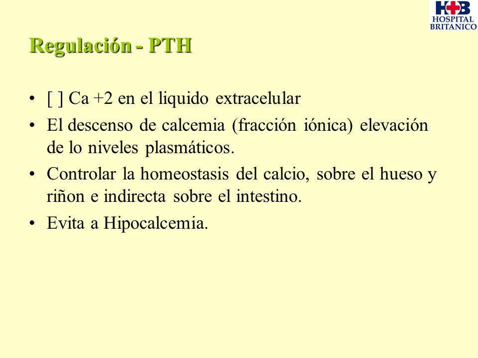 Regulación - PTH [ ] Ca +2 en el liquido extracelular